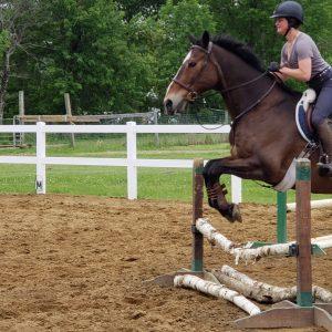 Lessons-Horse-Doug-Montana