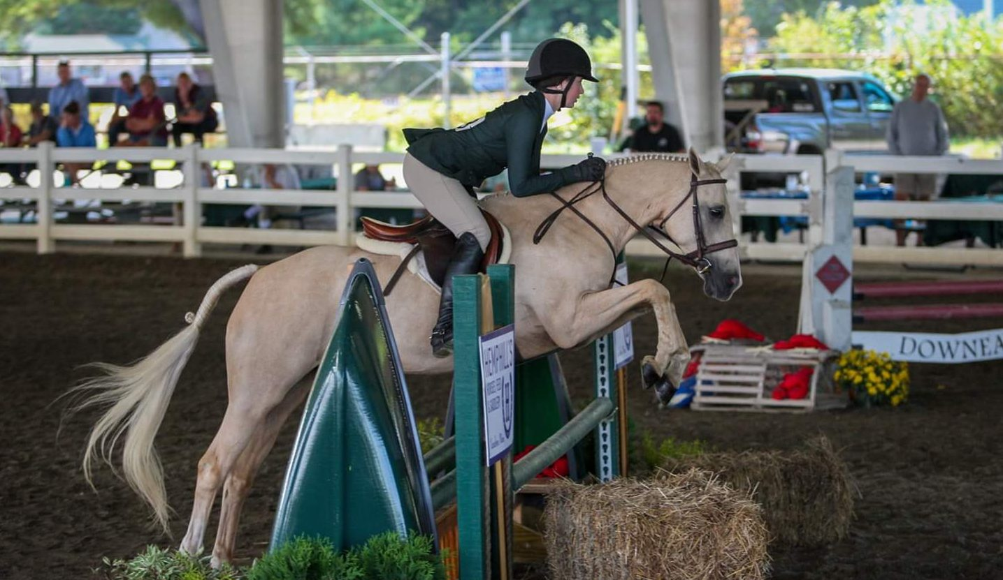 Maine horse competition