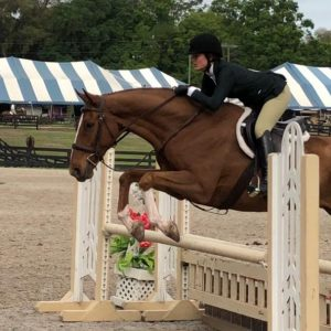 HORSE-SHOW-BANNER-19